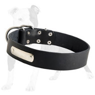 Identification Leather Dog Collar for Walking and Training