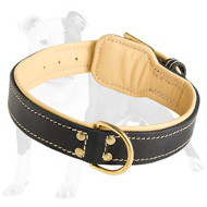 Nappa Padded Leather Dog Collar with Fur Protection Plate