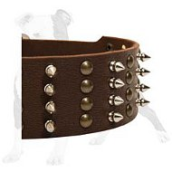Superior Leather Dog Collar with 4 Rows of Hand Set Studs and Spikes