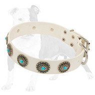 White Leather Dog Collar with Blue Stones Inserted in Carved Studs