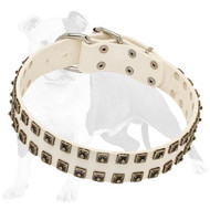 White Leather Dog Collar with Caterpillar Studs for Fashion Walking
