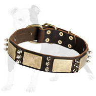Gorgeous War-Style Leather Dog Collar with Massive Bras Plates and Nickel Spikes
