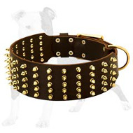 Extra Wide Leather Dog Collar with Brass Spikes for Daily Fashion Walking