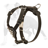 Walking Studded Leather Dog Harness for Puppies and Small Breeds