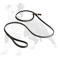 Combo Leather Dog Slip Lead 6 FT on 1/2