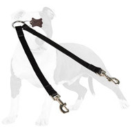 Coupler Nylon Leash for Walking Two Dogs