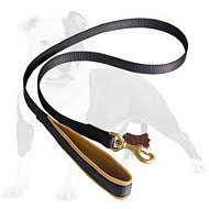 Nylon dog leash with support material on the handle (4 to 6 foot)