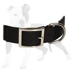 Perfect training collar made of nylon