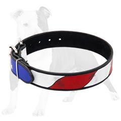 American flag painting on this training leather collar