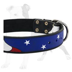 Professionally painted leather collar