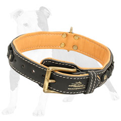 Walking leather collar with non-rusting hardware