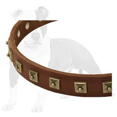 Leather Canine Collar of Reliable Quality