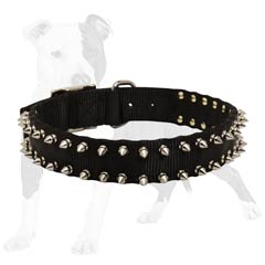 Spiked collar will make your dog unbeliavably great!
