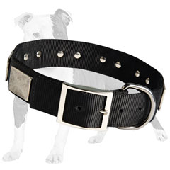 Nickel plated buckle securely fastens the collar and prevents the dog from break off the leash