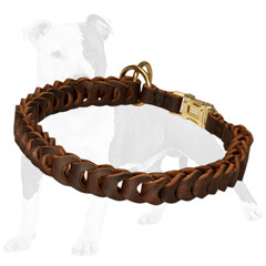 Choke Dog Collar with Quick Release Buckle