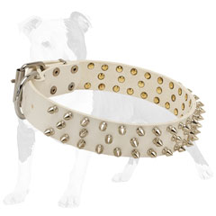 Supple leather collar adorned with silver spikes