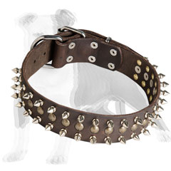 Spiky Leather dog collar with half-balls studs