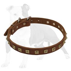 Extra Thin Leather Collar for Comfortable Dog Walking