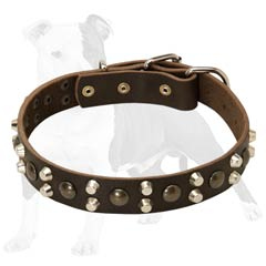 Safe and strong dog leather collar