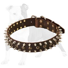 Leather Spiked and Studded Collar