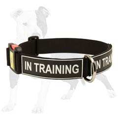 Safe and Comfy collar