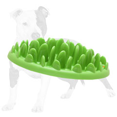 Interactve Dog Feeder for Pups and Small Breeds