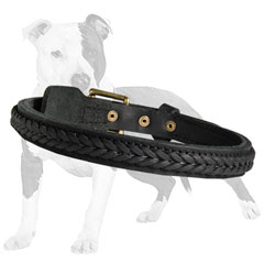 Easy Adjustable Leather Canine Collar
