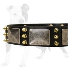 Reliable Leather Dog Collar