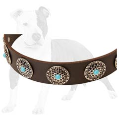 Sturdy leather material make this collar unbreakable