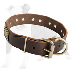 Super Comfortable Leather Canine Collar