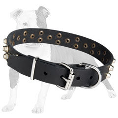 Easy Adjustable Leather Collar for Dog Exercising