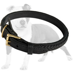 Sturdy Leather Dog Collar with Brass Hardware