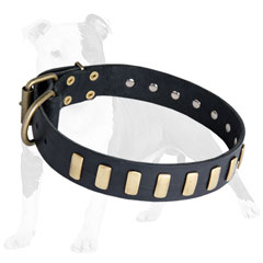 Studded Leather Dog Collar with Plates