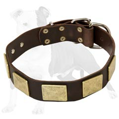 Leather collar with nickel plated details