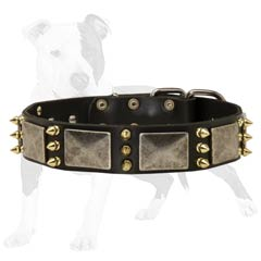Designer Leather Canine Collar with Vintage Plates