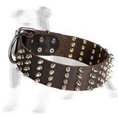 Spiky brown leather dog collar