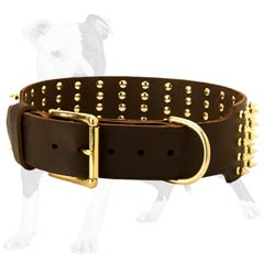 Wide Leather Collar with Brass Spikes