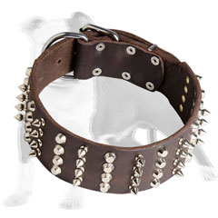 Leather dog collar of fashionable design
