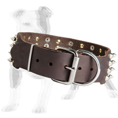 Brown leather dog collar with nickel plated hardware