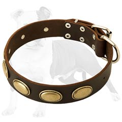 Designer Leather Dog Collar with Large Oval Plates