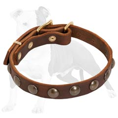 Lightweight Leather Dog Collar for Puppies