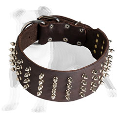 Leather dog collar extra wide