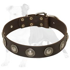 Fashion Leather Dog Collar of High Quality