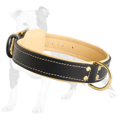 Stitched Leather Dog Collar