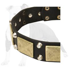 Handsome leather dog collar with decorations