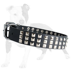 Leather dog collar with durable hardware
