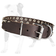 Walking Leather dog collar with 3 rows of studs