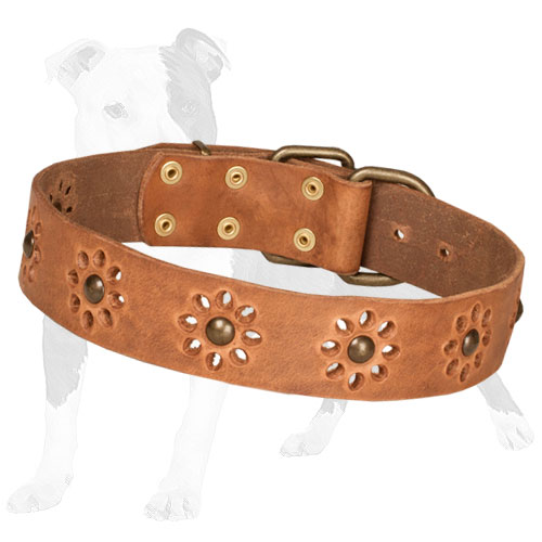 Tan leather dog collar adorned with flowers