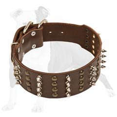 Strong leather dog collar with nickel plated hardware