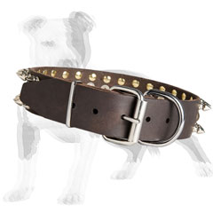 Walking leather dog collar with buckle and D-ring